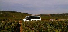 Autocars_Morey_Voyages_Excursion_dans_le_vignoble_de_Bourgogne.jpg
